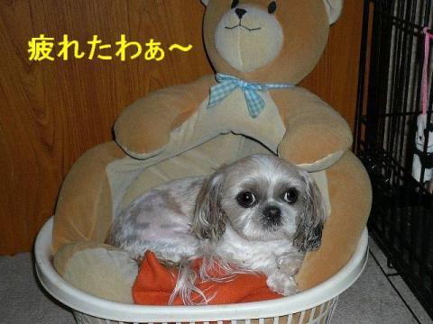 mint_20080614_4
