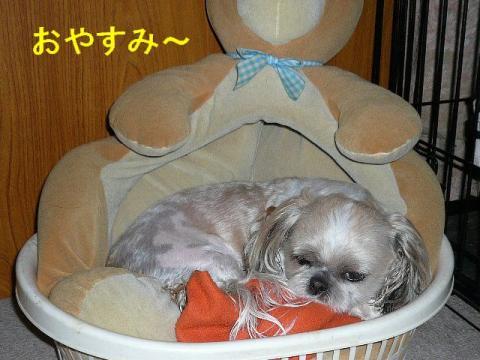 mint_20080614_5