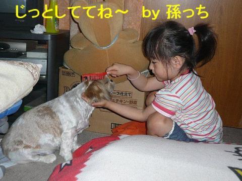 bibi_20080616_4