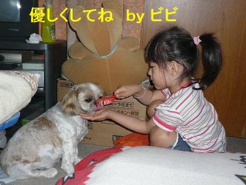 bibi_20080616_2