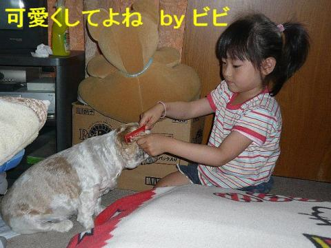 bibi_20080616_1