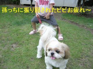 bibi_20060722_6