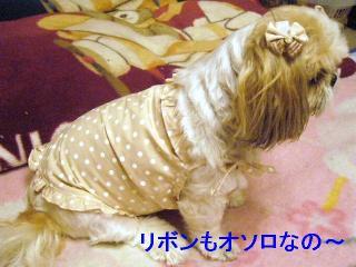 bibi_20060724_2