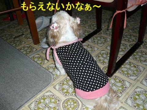 mint_20080615_2