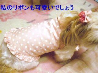 mint_20060724_2