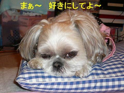 mint_20080617_4