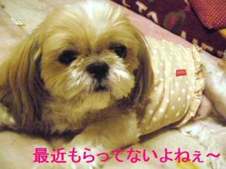 bibi_20060727_1