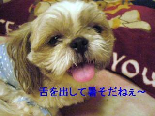 love_20060728_1