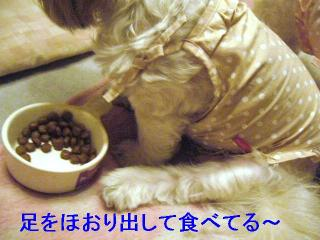 bibi_20060728_1