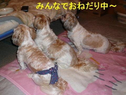 oyako_20080625_2