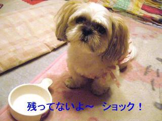 mint_20060728_3