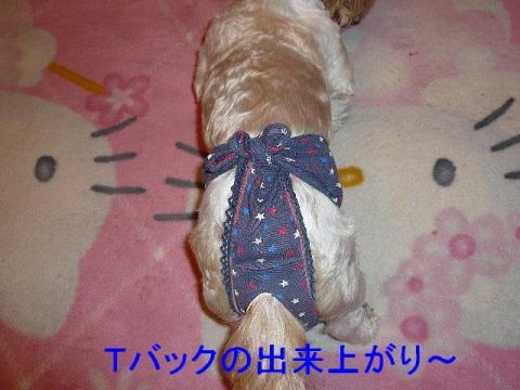 mint_20080626_12