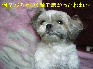 love_20060730_2