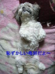 love_20060730_3