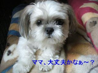 mint_20060730_1