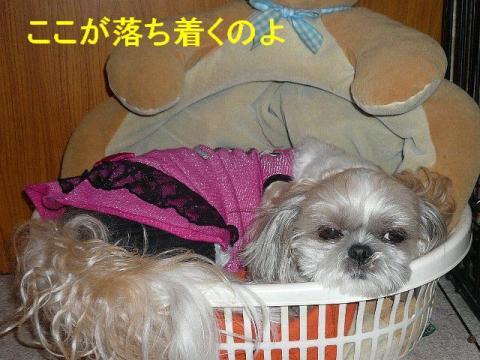 mint_20080707_13