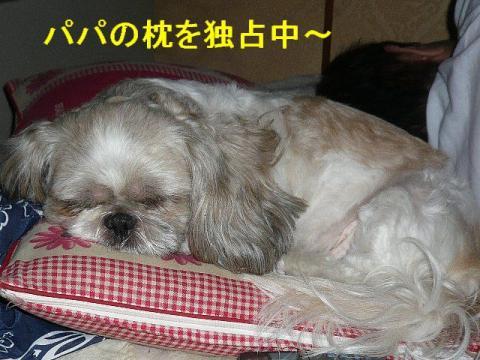 love_20080710_1