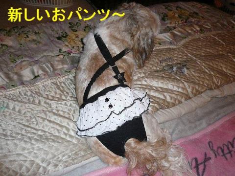 love_20080711_1