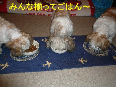 oyako_20080717_1