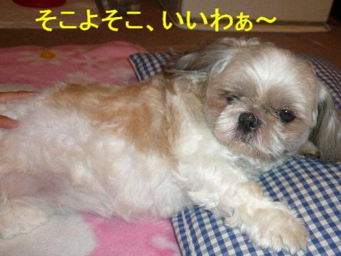 love_20080720_3