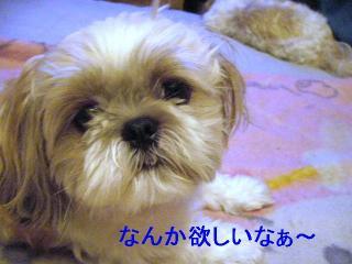 mint_20060813_1