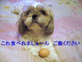 love_20060813_3