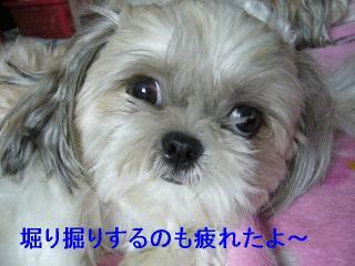 mint_20060820_8