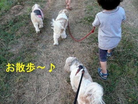 oyako_20080806_1