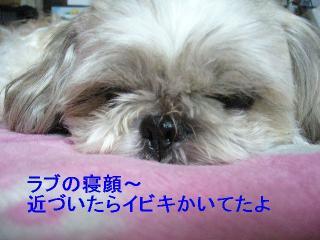 love_20060820_2