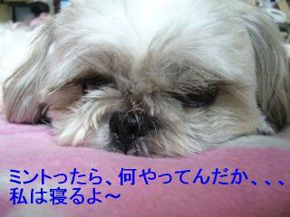 love_20060820_1