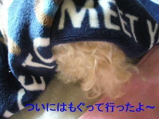 mint_20060820_3