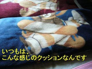 wan_20060820_1