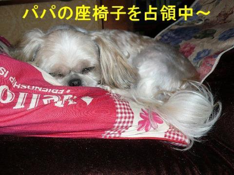 mint_20080808_1