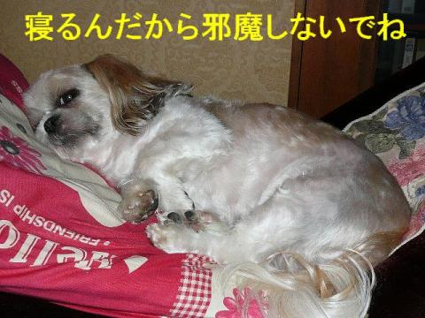 mint_20080808_3