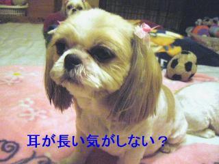 bibi_20060821_1