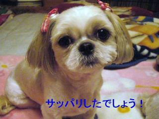 mint_20060821_1