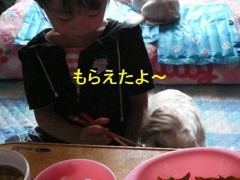 mint_20080818_6