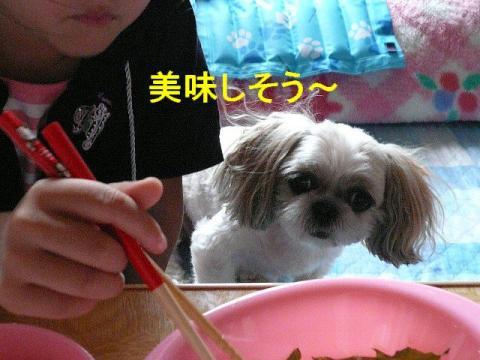 mint_20080818_2