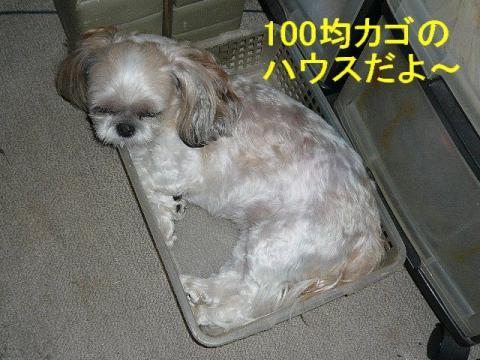 mint_20080820_2