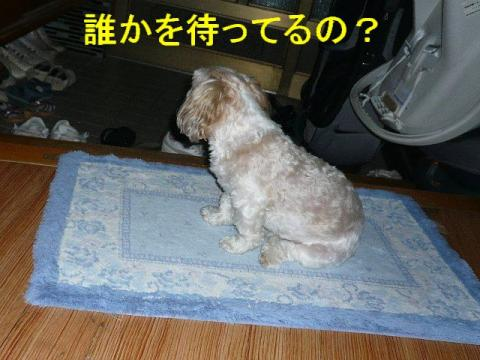 mint_20080824_2