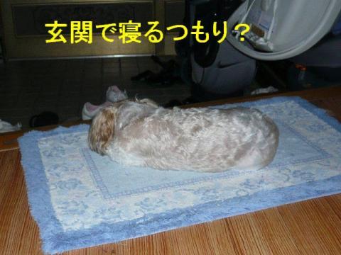 mint_20080824_5