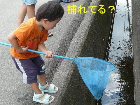 riku_20080826_3