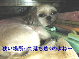 mint_20060827_2