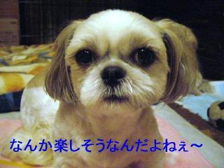 mint_20060828_3