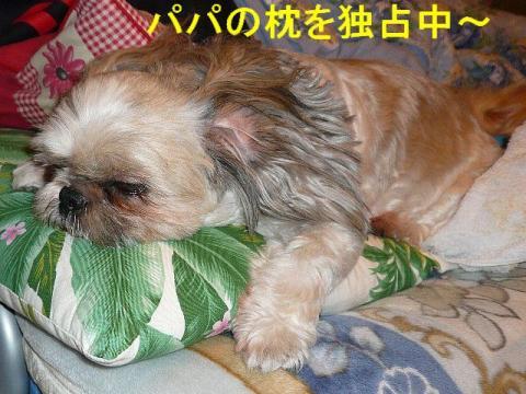 love_20080911_2