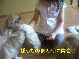 oyako_20060902_1