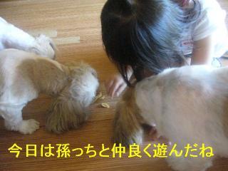 oyako_20060902_2