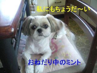 mint_20060903_1