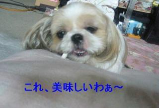 bibi_20060909_2