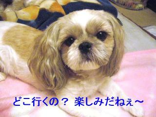 love_20060926_1